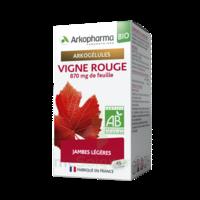 Arkogélules Vigne Rouge Bio Gélules Fl/45 à Saint-Médard-en-Jalles