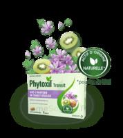Phytoxil Transit Comprimés B/20 à Saint-Médard-en-Jalles