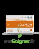 Granions De Selenium 0,96 Mg/2 Ml S Buv 30amp/2ml à Saint-Médard-en-Jalles