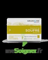Granions De Soufre 19,5 Mg/2 Ml S Buv 30amp/2ml à Saint-Médard-en-Jalles