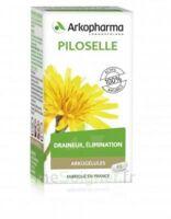 Arkogélules Piloselle Gélules Fl/45 à Saint-Médard-en-Jalles