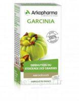 Arkogélules Garcinia Gélules Fl/45 à Saint-Médard-en-Jalles