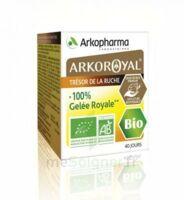 Arkoroyal 100% Gelée Royale Bio Gelée Pot/40g à Saint-Médard-en-Jalles
