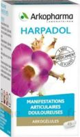 ARKOGELULES HARPAGOPHYTON, 150 gélules à Saint-Médard-en-Jalles