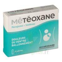 Meteoxane Gél Plq/30 à Saint-Médard-en-Jalles