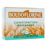 BOLDOFLORINE, comprimé pelliculé à Saint-Médard-en-Jalles