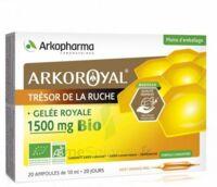 Arkoroyal Gelée Royale Bio 1500 Mg Solution Buvable 20 Ampoules/10ml à Saint-Médard-en-Jalles