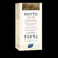 Phytocolor Kit Coloration Permanente 8.3 Blond Clair Doré à Saint-Médard-en-Jalles