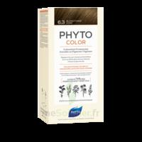Phytocolor Kit Coloration Permanente 6.3 Blond Foncé Doré à Saint-Médard-en-Jalles