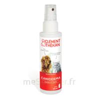 Clément Thékan Caniderma Solution Externe Cicatrisant Spray/125ml à Saint-Médard-en-Jalles