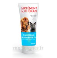 Clément Thékan Shampooing Peaux Sensibles T/200ml à Saint-Médard-en-Jalles
