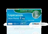 Loperamide Mylan Pharma 2mg, Gélules à Saint-Médard-en-Jalles