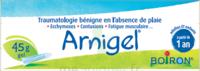 Boiron Arnigel Gel T/45g à Saint-Médard-en-Jalles